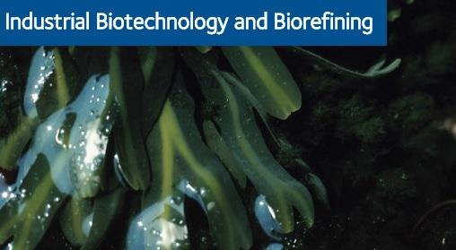 CPI seaweed case study