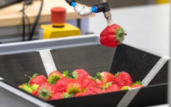 https://hvm.catapult.org.uk/wp-content/uploads/2021/08/2.-Breakthrough-in-intelligent-robotics-MTC-scaled-353x220.jpg